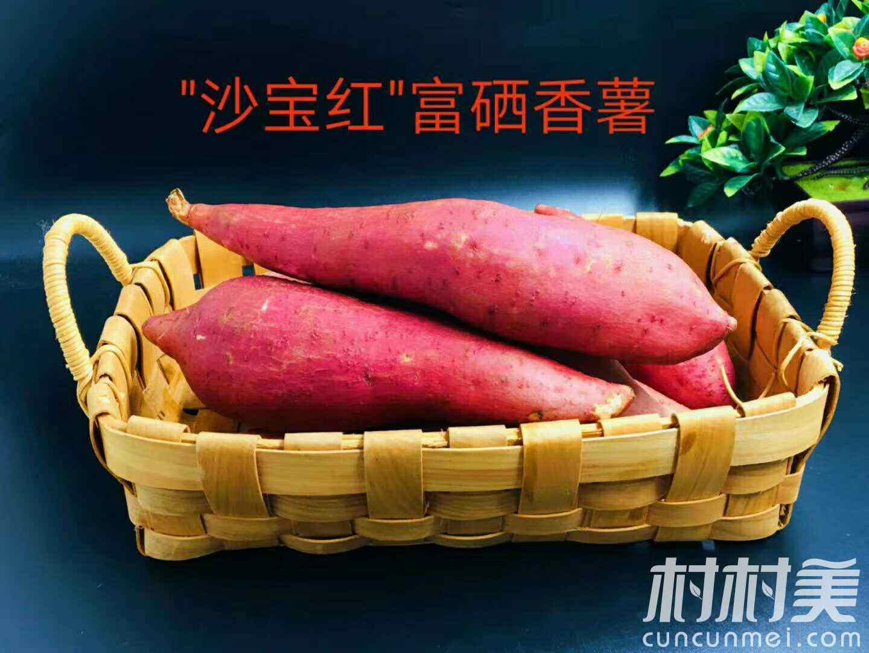 富硒沙宝红香蜜薯