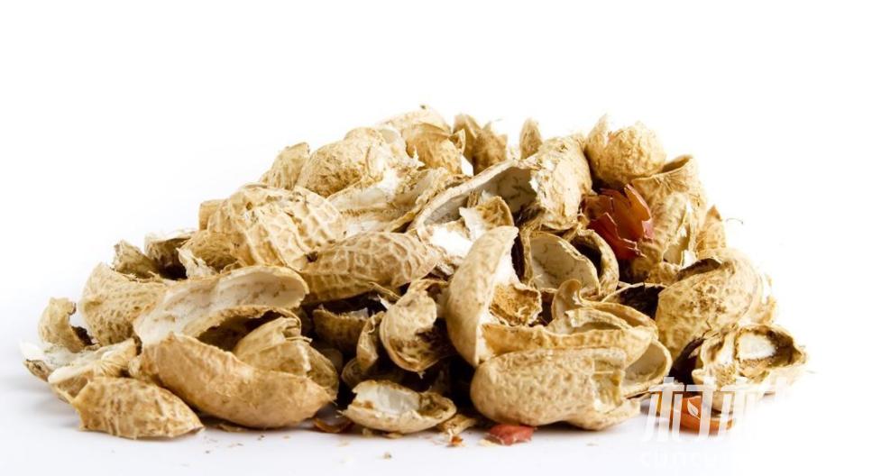 花生壳有什么用途:花生壳变废为宝用途多