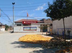 兰考县崔寺村