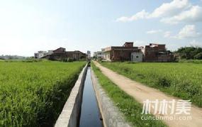兰考县姜楼村