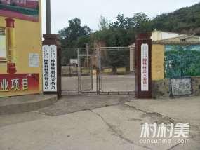 陕州湖滨柳林村
